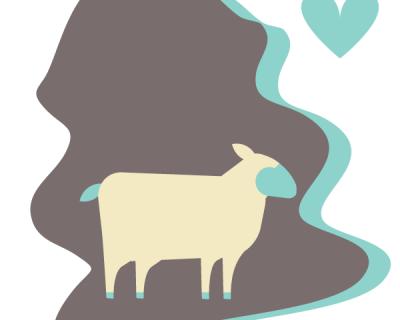 Tanned Lamb Skin