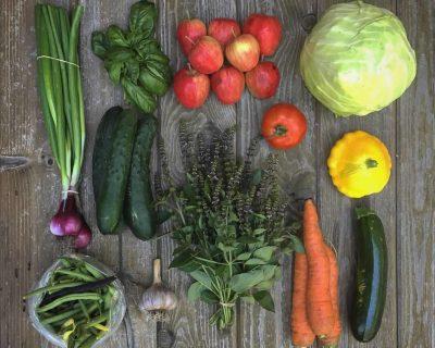 Garden Veggie Mixer Pack
